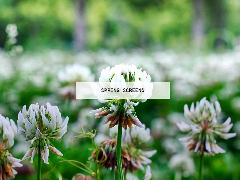 spring screens