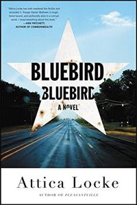 Bluebird Bluebird (Book)