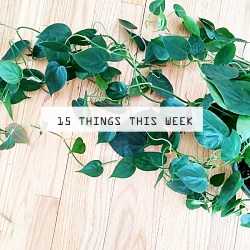 15 things this week