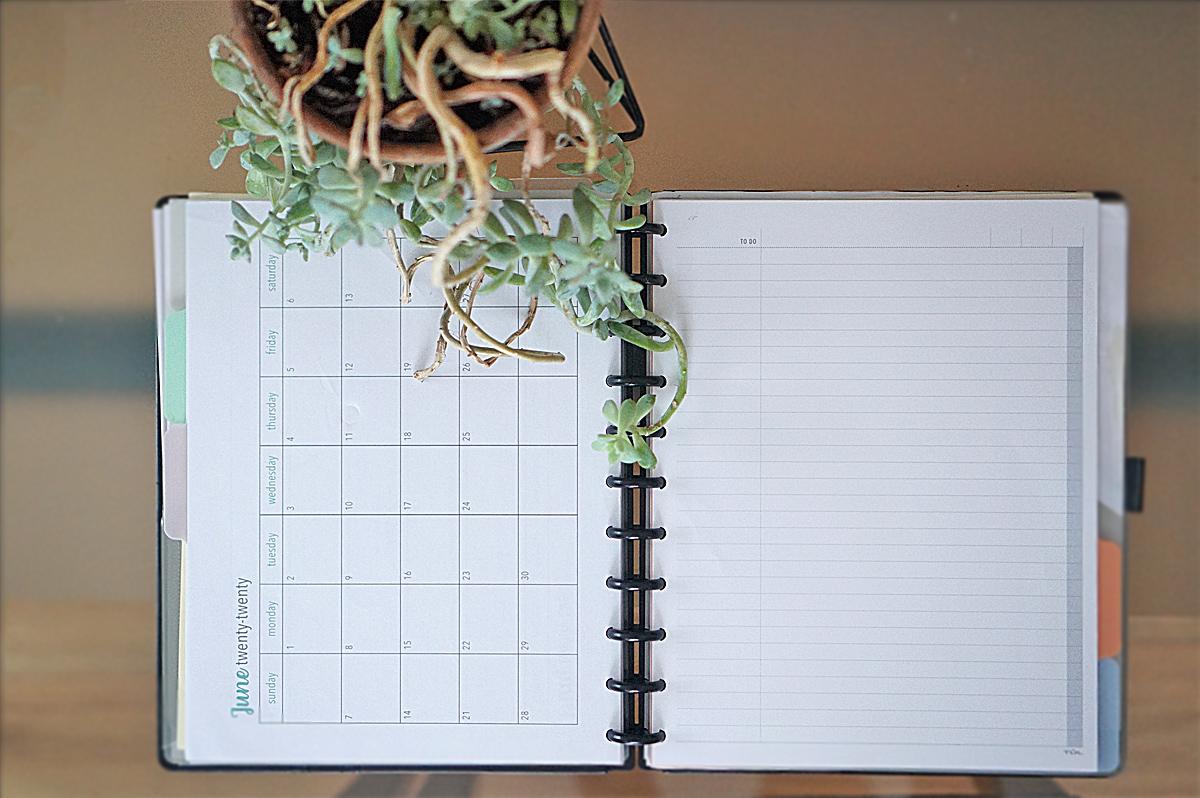 Work Planner Organization