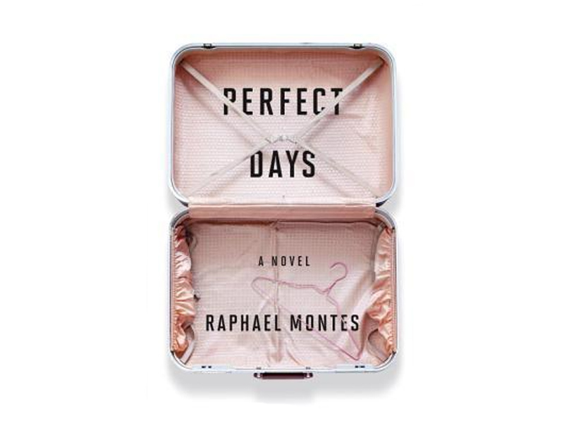 Perfect Days (Book)