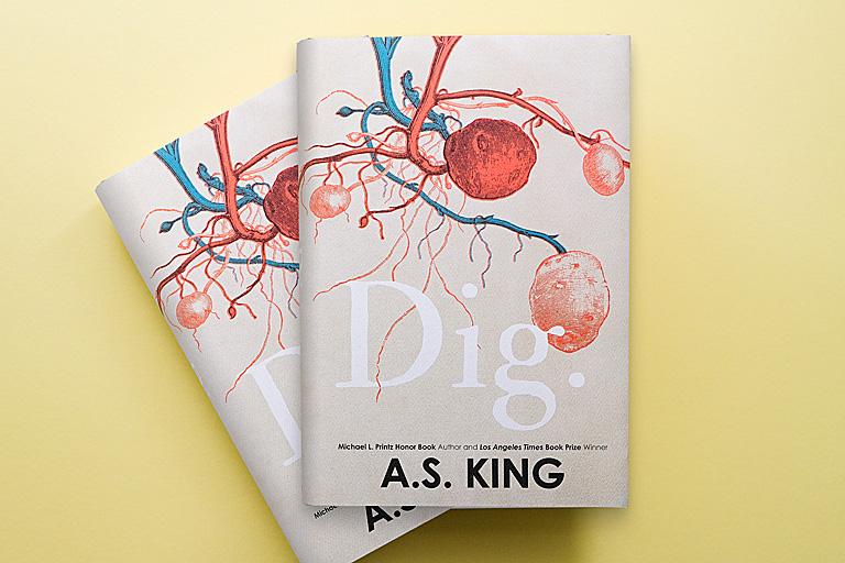 Dig (Book)