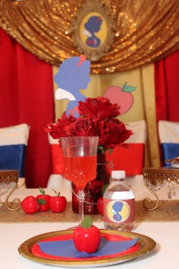 Snow White Princess Party Planner St Augustine