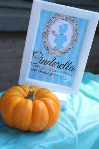 Cinderella Princess Birthday Party Planner