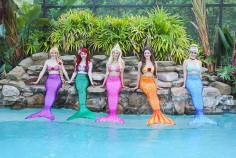 Princess Mermaids Jacksonville and St Augustine