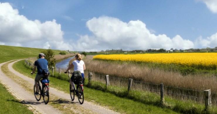 Bonus bici e monopattini: achi spetta e comerichiederlo