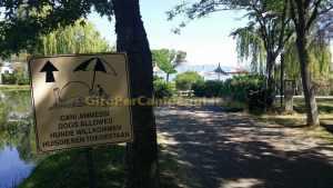 Spiaggetta animali ammessi al Camping Village Italgest