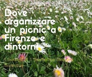 Dove-organizzare-un-picnic-a-Firenze-e-dintorni