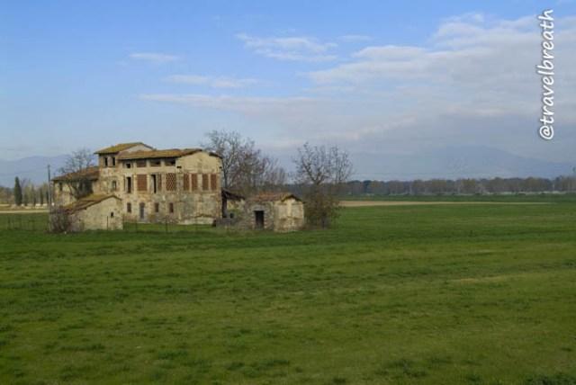 picnic a Firenze - Cascine di Tavola