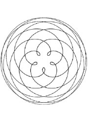 Venus-Orbit-Rec