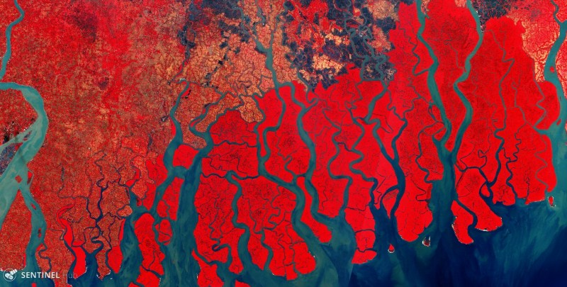 Sundarban, Bangladesh >> captured by Sentinel-2A (processed with Sentinelhub)