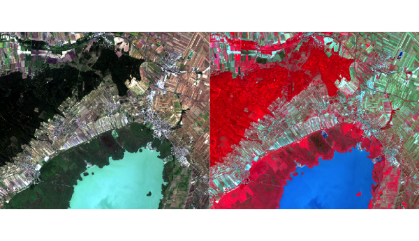 Lake Neusiedl as seen by Sentinel-2