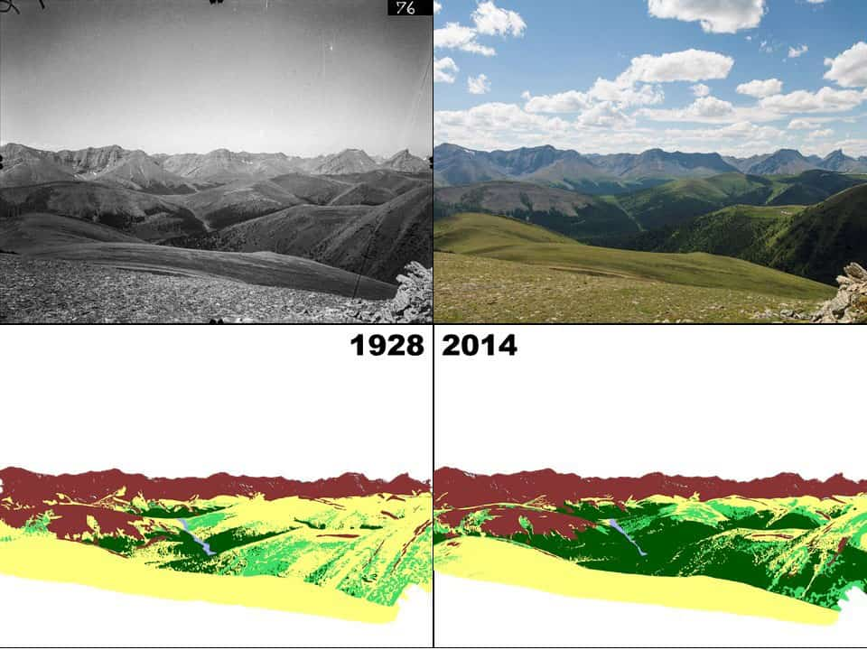 The photography on the left was taken in 1928 by William Henry Miller and the photograph on the right was taken by the Mountain Legacy Project in 2014, allowing for a comparison mapping of landscape changes. Source: Different viewpoints, same landscape: do land-based photos and Landsat imagery paint the same picture? Fortin, J. 2018.