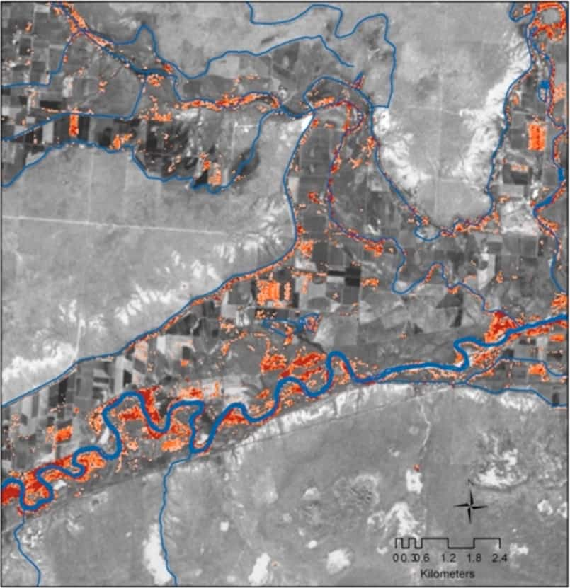 Map of detected tamarisk in southeastern Colorado, along the Arkansas River and irrigation ditches. Tamarisk infestations are shown from moderate (orange) to high (red). Map: Evangelista et al., 2009.