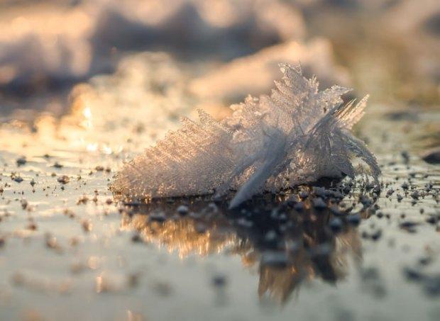 Чудо природы - снежинки. Как рождаются и почему они такие разные?