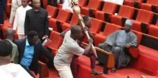 Police Reveal Those Who Stole Senate Mace