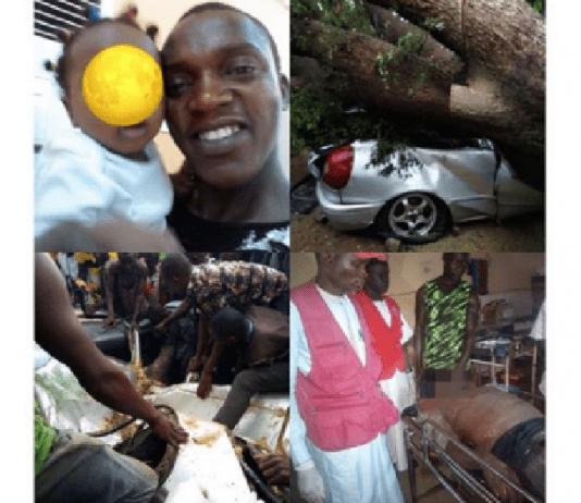 Popular Igbo Mechanic, Hiding From Rain, Dies As Tree Falls on Car