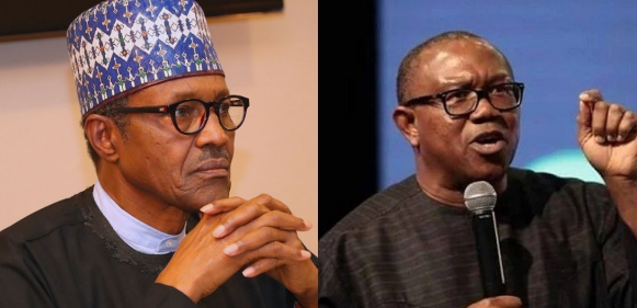 Image result for What Tinubu failed to tell Buhari – Peter Obi