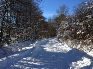fagnes neige hiver(10)