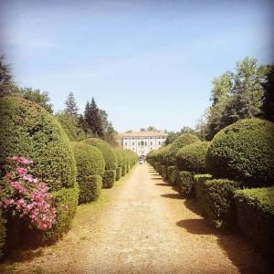 immagine scaricata dal sito di Villa Malenchini