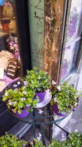 violette-borsari