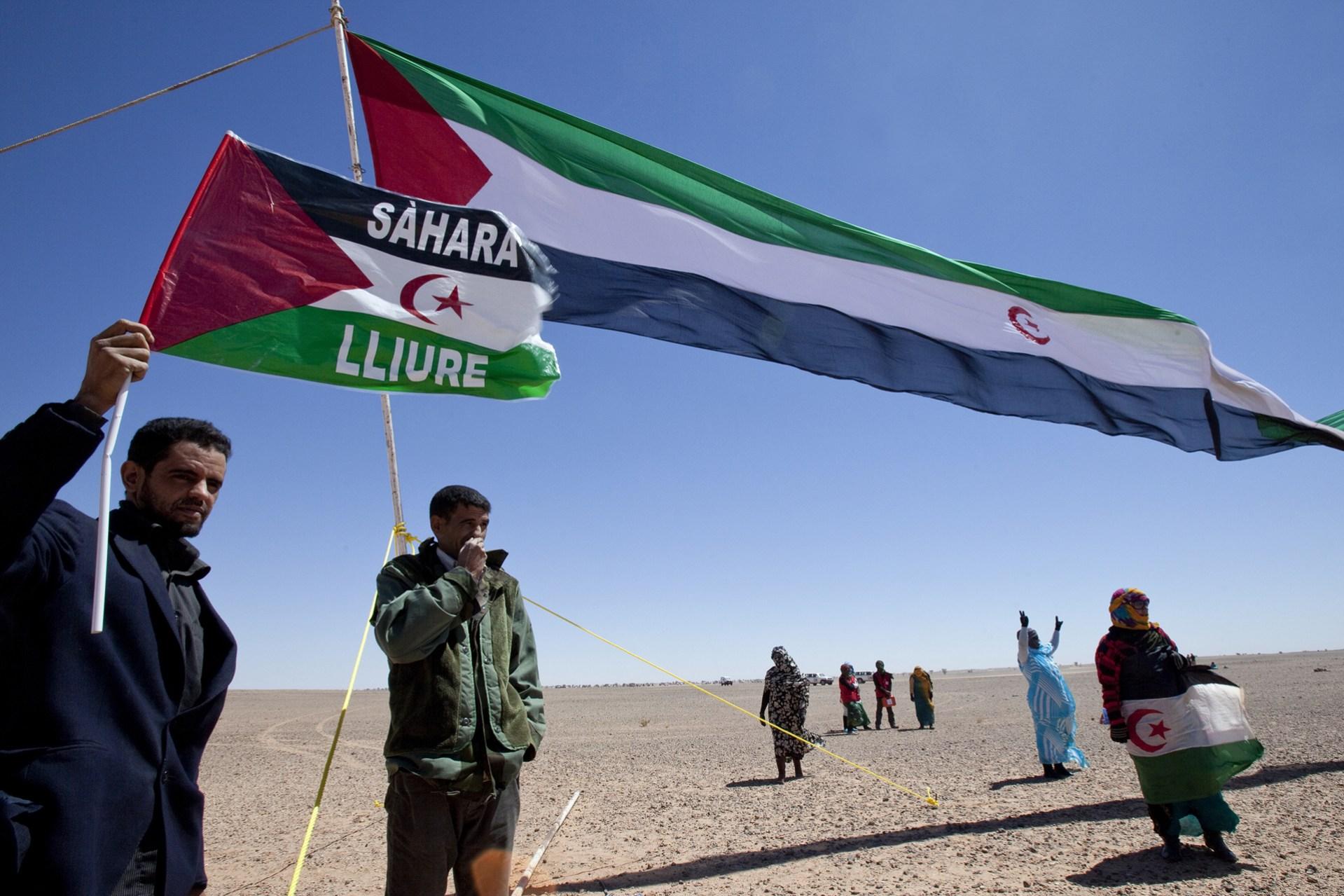 Saharawi 008