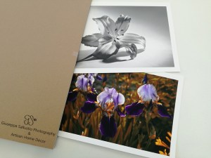 Photography and Prints