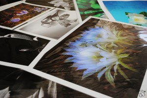 Giuseppa Sallustio Photography & Artisan Photography