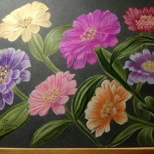 New blooms in the garden