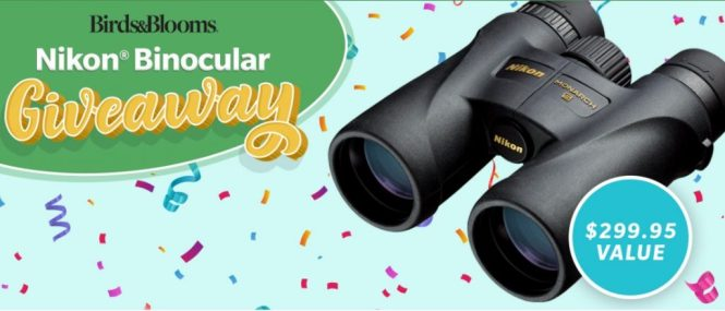 Birds And Blooms Nikon Binocular Giveaway