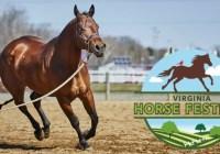 WTVR Virginia Horse Festival Contest