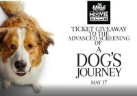 A Dog Journey Home Contest