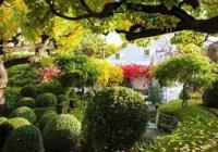 Dream Garden Sweepstakes Spring 2019
