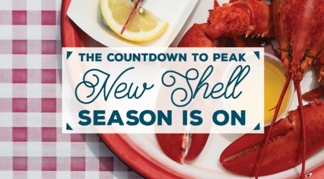Season of Maine Lobster Sweepstakes