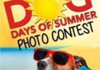 NewsWatch 12 The Dog Days Of Summer Photo Contest