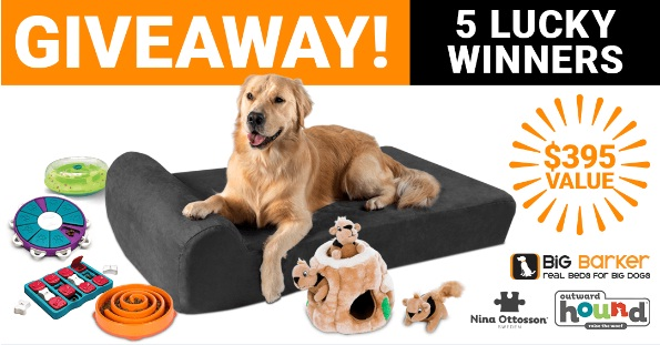 Big Barker Arthritis Awareness Week Giveaway