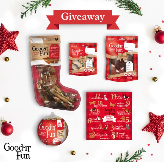 United Industries Corporation Good N Fun Dreambone Holiday Sweepstakes - Win Prize Pack