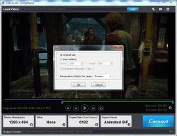 Video2Gif2-250.jpg