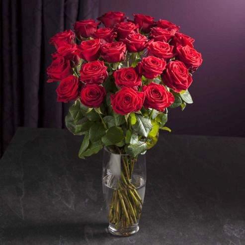 tesco roses