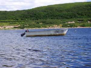 Pictures from Newfoundland