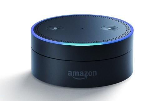 Gizlogic- Amazon Alexa (5)