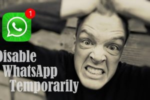 temporarily disable whatsapp
