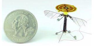Robot tipo abeja