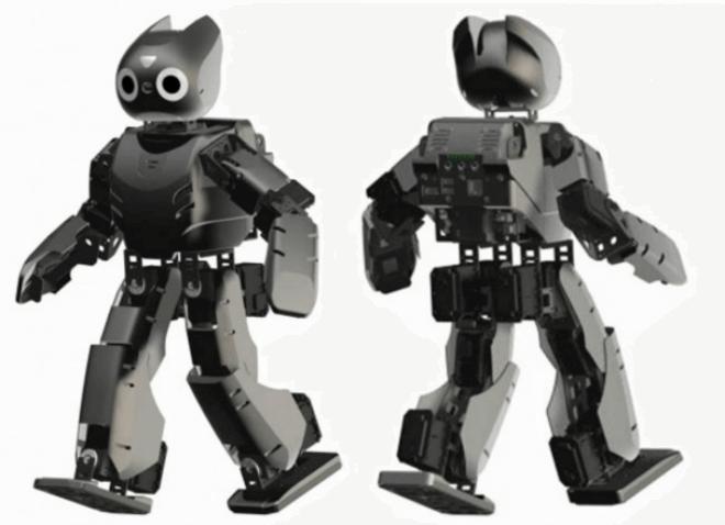 Darwin, el robot fisioterapeuta para niños con parálisis cerebral