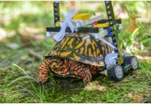 silla de ruedas con piezas de Lego