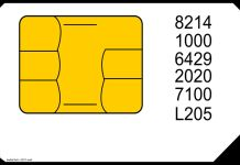 Vector de una tarjeta SIM con números