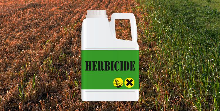 VA Disability Herbicides