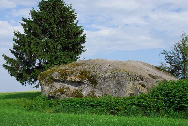 Bloc erratique de gneiss au Steinhof