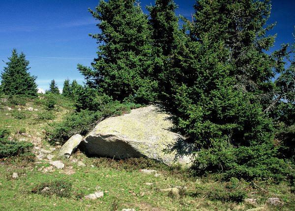 Volumineux bloc de granite du Mont Blanc au sommet de l'Arpille