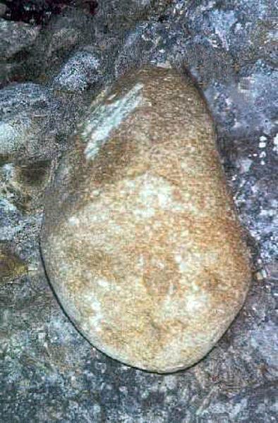 Galets de roches cristallines de forme typiquement glaciaire, qui ne sont donc pas originaires du Vercors, mais qui peuvent provenir du bassin d'alimentation glaciaire de l'Isère, de celui de la Romanche entre autres (longueur environ 30 cm)